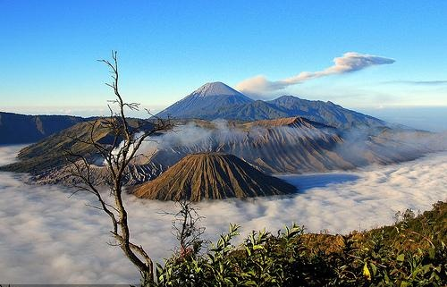 Image result for taman nasional bromo