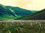 Tempat Wisata Bromo dan Sekitarnya Yang Wajib Dikunjungi