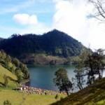 Paket Tour Ranu Kumbolo | Wisata Danau Ranu Kumbolo